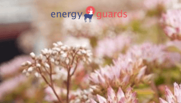 Energy Guards